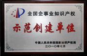 """公司荣获""""全国企事业知识产权示范创建单位""""称号(2010年)"""