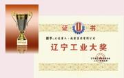 公司荣获辽宁省工业大奖称号(2015年)